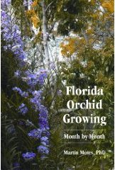 Florida Orchid Growing Month by Month