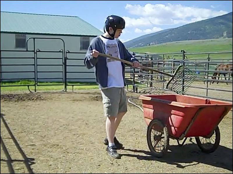 Patrick shovelling manure into wheelbarrow