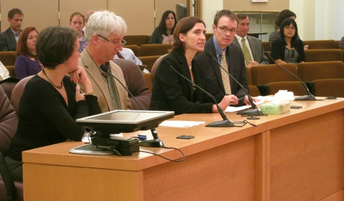 Andrea Durbin, second from right addresses the county board during their Sept. 20  meeting.