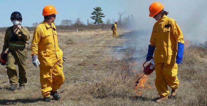 Cameron Ranch prescribed burn