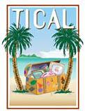 TICAL logo