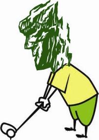 Pro Bono Golf - Old Man on the Mountain