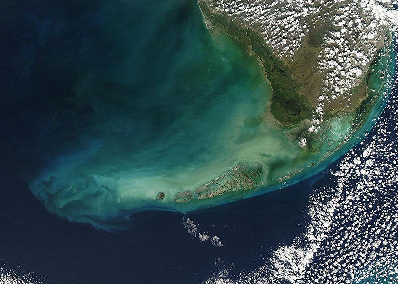 NSAA Florida Keys