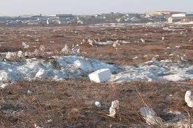 Trash- plastic