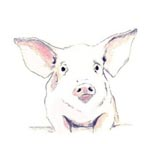 Pigshibition, march 12