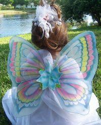 willow wings model