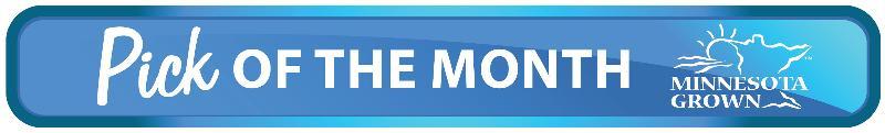 New POM Logo