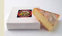 Nicasio Square Cheese