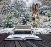 Books & Winter