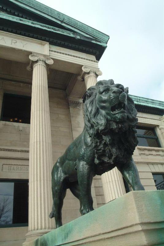 lion - harris