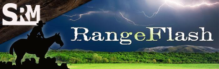RangeFlash