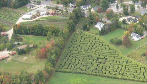 Corn Maze Aerial 3