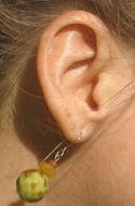 kendras ear