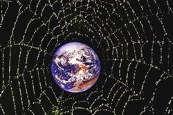 planetary web