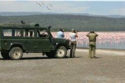 Gane Viewing at Lake Nakuru