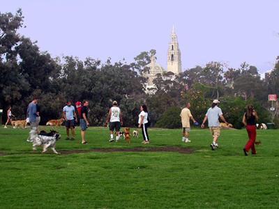 Nate's Point, Balboa Park