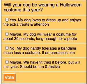 Halloween Costume Poll