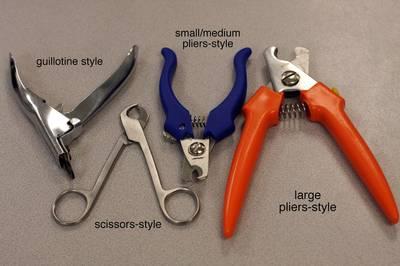 Nail trim tools