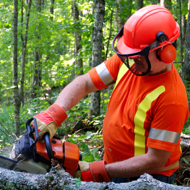 forestry worker outdoors using chainsaw