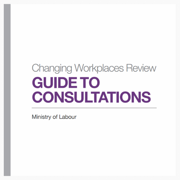 Cover of 'Guide to Consultations'