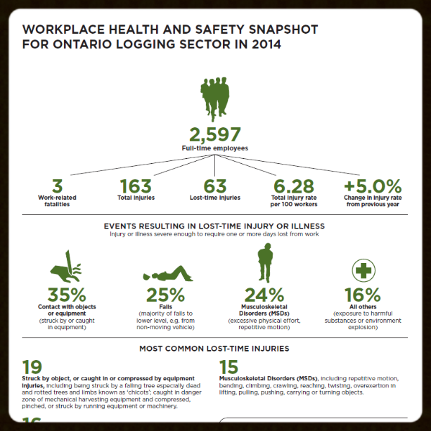 Logging health and safety infographic