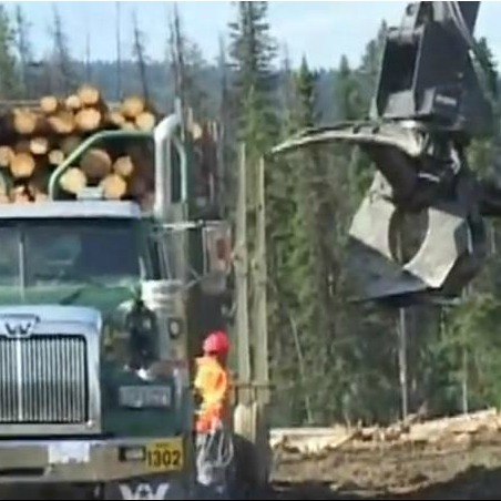 Forestry - Loader assisted log truck wrapping