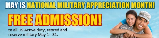 Military Month 2013 banner