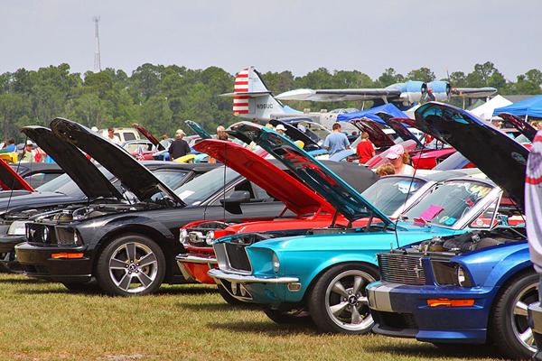 Mustangs & Mustangs Photo