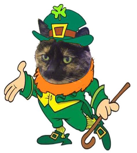 Irish Izzy