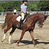 Oak Grove Equestrian Team
