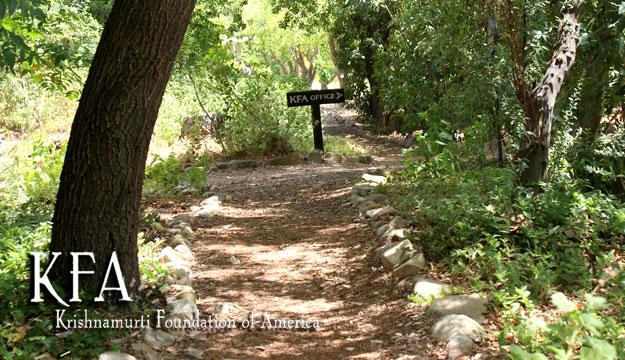 KFA Pathway