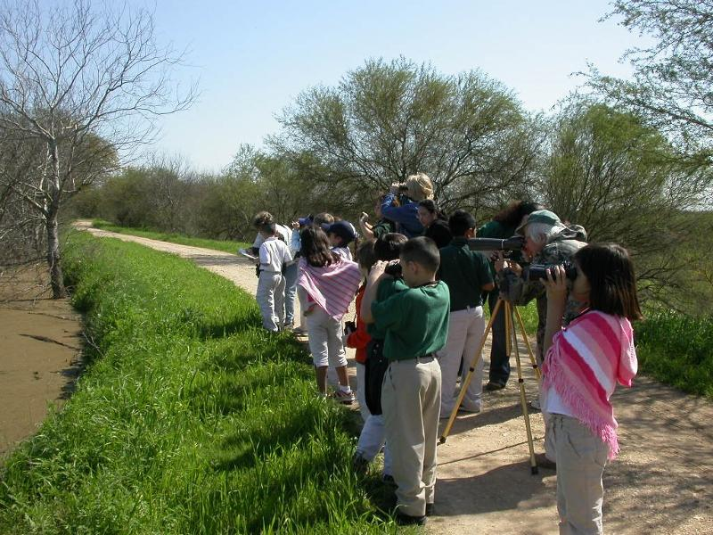 kids birding
