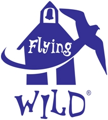 flying wild one color logo