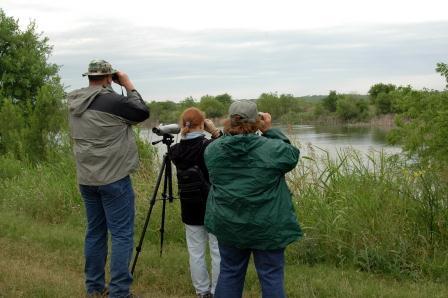 adults birding