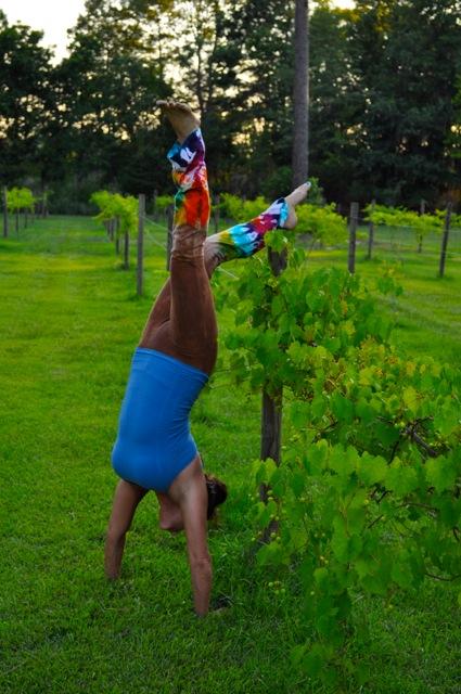 Bev handstand