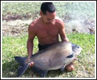 Pacu Fishing