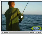 Shark Fishing Videos
