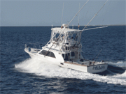 Mexican Fishing Charters