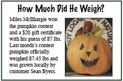 Pumpkin Contest
