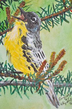 Kirtland's Warbler by Elizabeth Valenzuela