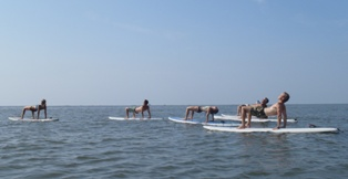 """yoga """"table top"""" pose on SUP's on the water at St Simons"""
