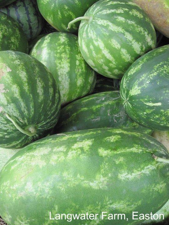 watermelon_langwater