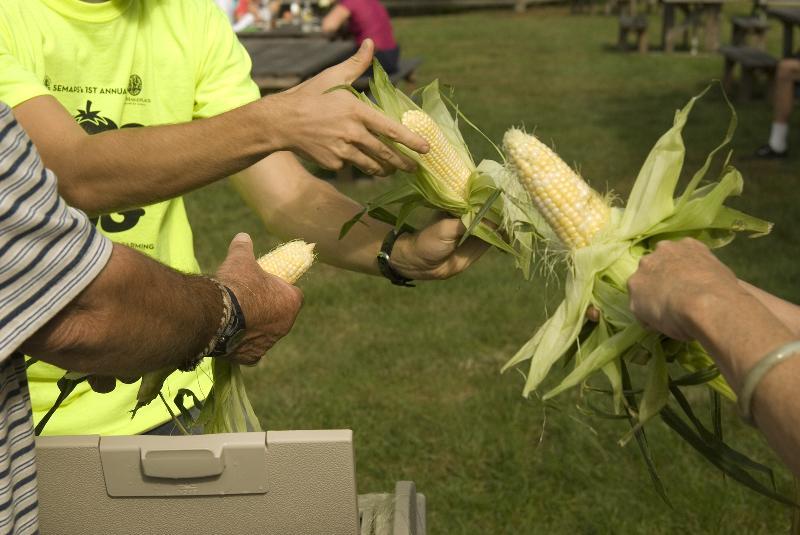 bog jog corn