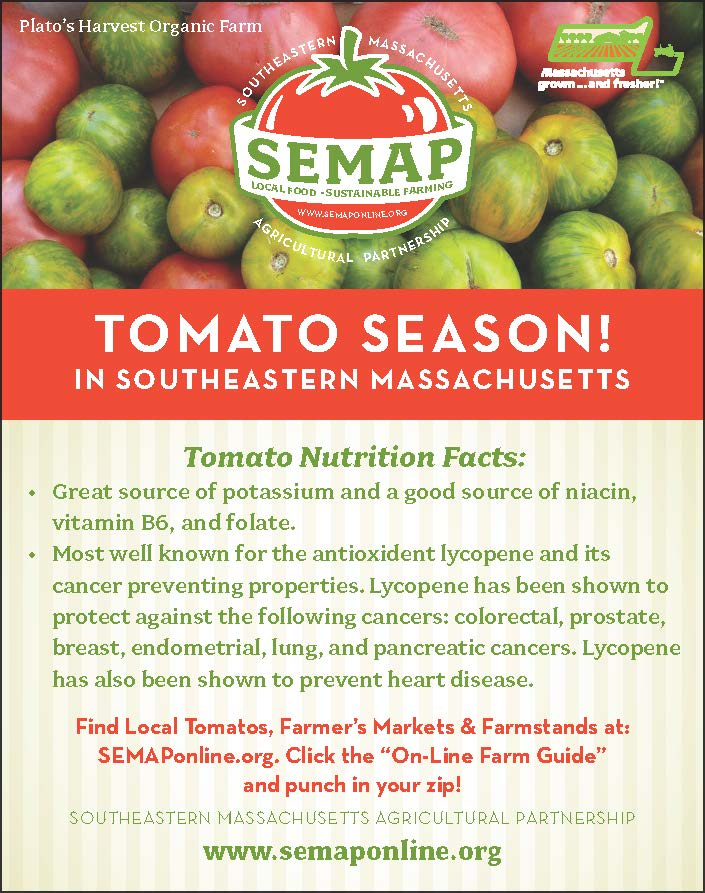 Tomato Nutrition Card