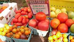 Brix_market_tomatoes