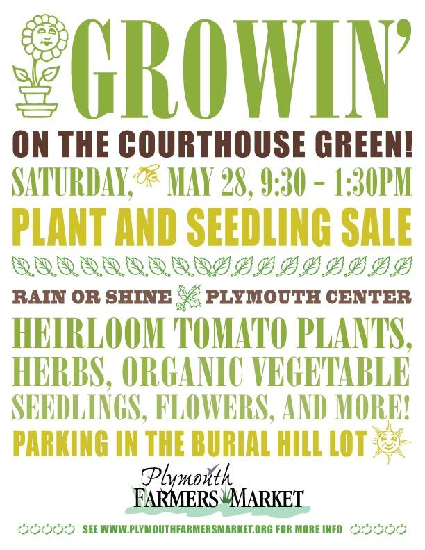 Seedlings&plant sale