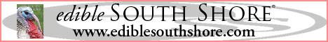 eSS logo 2013