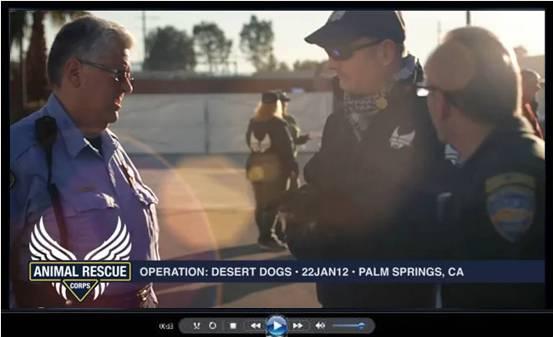 Operation Desert Dogs video