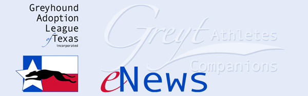 GALT eNews logo
