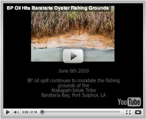 BP Oil Hits Barataria Oyser Fishing  Grounds